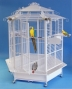 Pro velké papoušky