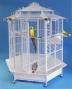 For large parrots